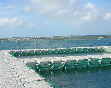 fish farming floating docks