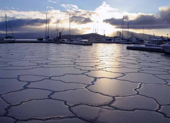 Frozen Lake with Anchored Boats