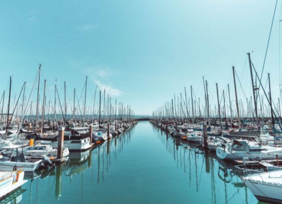 A Commercial Marina